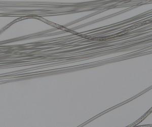 丝绸纤维装片