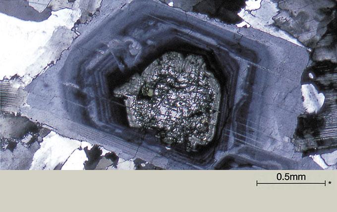 石英闪长岩中斜长石的带状结构。*标尺显示样本的实际大小